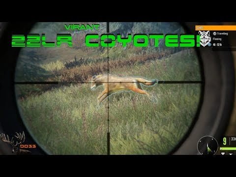 Hunting COYOTES with The 22 LR VIRANT!! Call of the Wild THEHUNTER 2018