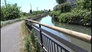 15 見沼代用水路コース