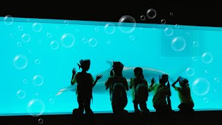 #鹿児島#いおワールドかごしま水族館 いおワールドかごしま水族館でイルカになる☆