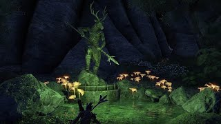 TESO #67 В чреве Морского ястреба, Амнорал из Валенвуда, Охота на тролля, Затопленная роща.