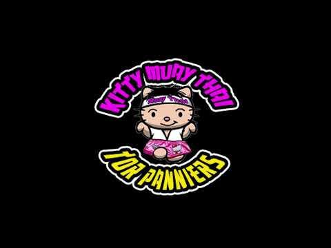 Kitty Muay Thai Tor Panniers for Honda #ADV150 | Full Panniers | Side Panniers | Top Rack | Top Box