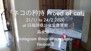 【猫写真家・森永健一写真展 ネコの矜持 Proud of cat 個展第2部 Version 2】