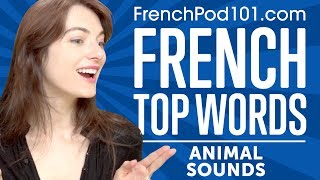 Learn the Top 10 Animal Sounds in French