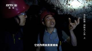 《地理·中国》 20200113 自然胜景·探秘无人岛 上| CCTV科教