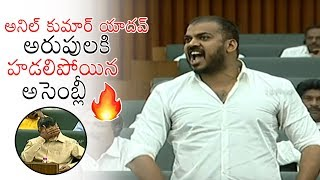Minister Anil Kumar Yadav MOST Aggressive Speech EVER | AP Assembly Sessions | YSRCP | Daily Culture