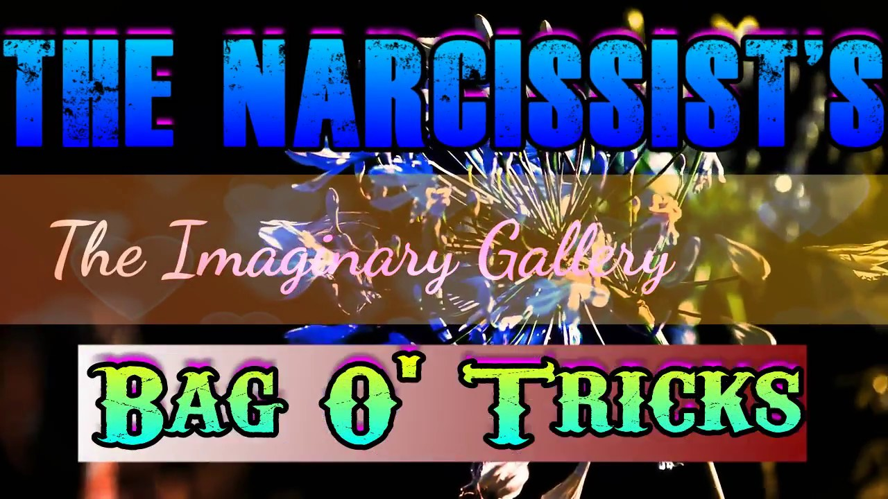 Bag O Tricks The Narcissists Smear Campaign Types Examples