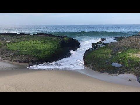 Our 1st Day In Laguna Beach California