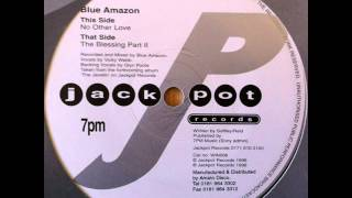 Blue Amazon - No Other Love (HQ)
