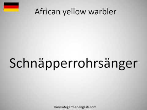 How to say African yellow warbler in German?