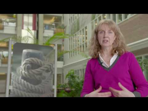 Our Scientists – From Coast to Coast to Coast – Diane Lavoie