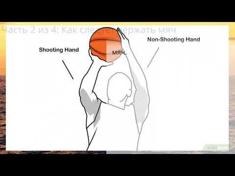 Вопрос: Как бросать баскетбольный мяч?