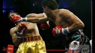 Ужасы единоборств (Horrors of wrestling , boxing , wwe , mma )