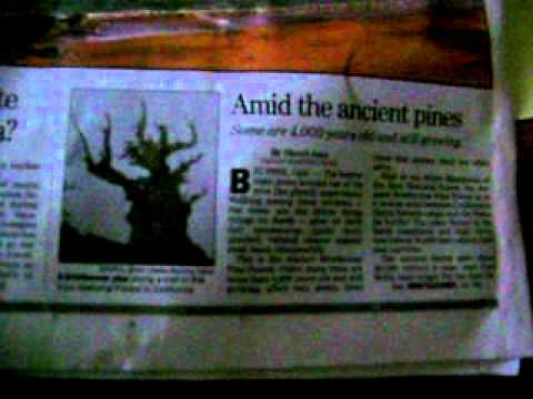 my newspaper today saturday april 23rd 2011, saturday, nice photos 2011