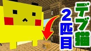 【マインクラフト】家具MODを追加してデブ猫と生活したい #5 デブ猫の2匹目が釣れた件【マイクラ実況】