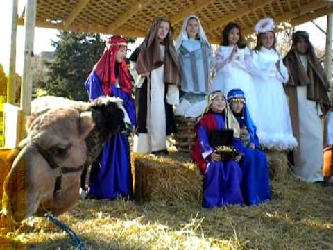 Call 815-600-6464 Live Nativity Animal Rental, Nativity Animal, Chicago, Chicagoland, Illinois