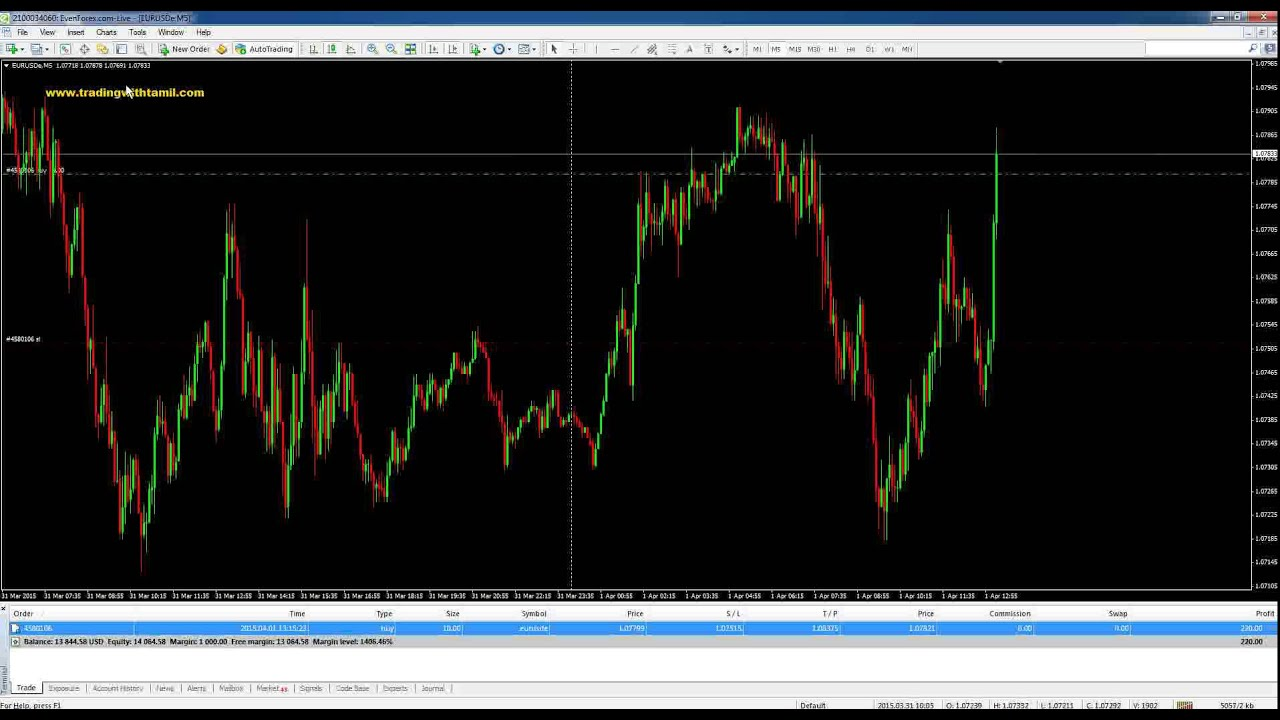 Green channel forex services