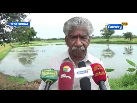 Farmers appeal for government aid   Cauvery News
