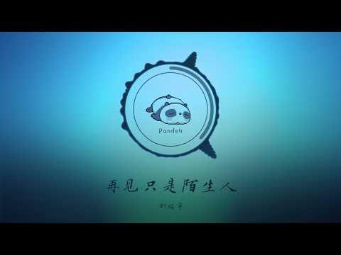 抖音男版【再见只是陌生人】【Zai Jian Zhi Shi Mo Sheng Ren】-  刘炫宇