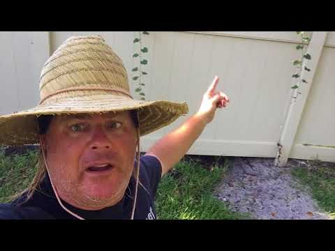Donnie Baker Gives a Live Update on Hurricane Irma plus Survival Tips!