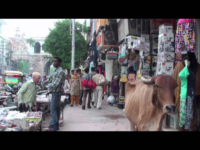 The market of Vadodara (Gujarat - India) Travel Video