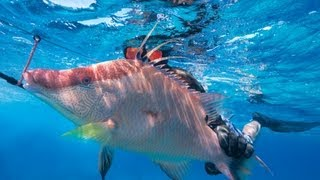 Headhunter Spearfishing takes the pole spears south- The Jumentos and the Ragged Islands