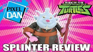 Splinter Rise of the TMNT Ninja Turtles Action Figure Video Review