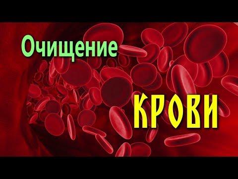 ОЧИЩЕНИЕ КРОВИ от вирусов, бактерий, аллергенов, токсинов...