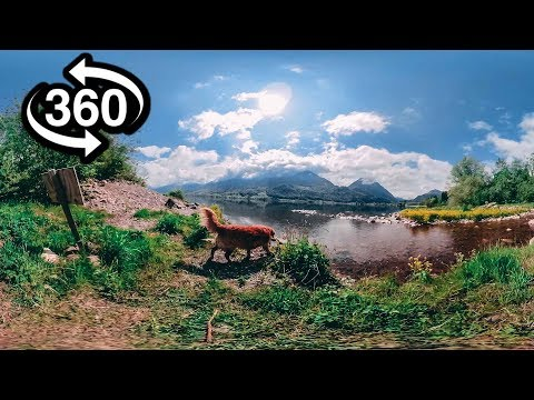 Virtual Nature 360° – 4K Nature Meditation for Daydream, Oculus, Gear VR