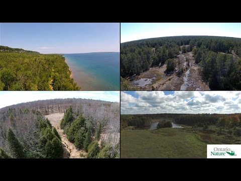 Aerial Footage of Ontario Nature's Nature Reserves