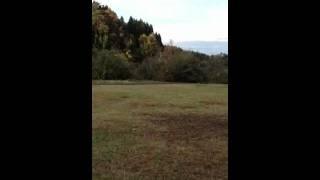 山の公園で走ってきました.