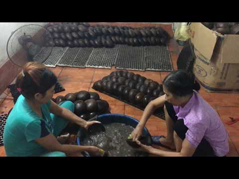 Vietnam coconut shell bowl supplier - www.lacquerhomevn.com