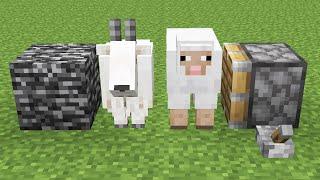 goat + sheep = ???