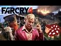 Let's Play Farcry 4 [Deutsch] #083 Aus dem Postflugzeug geschleudert