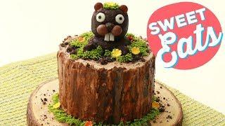 Groundhog Day Cake   Food Network