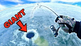 TROPHY FISH THROUGH THE ICE!!! Ice Fishing REMOTE Trophy Fisheries (EPIC)