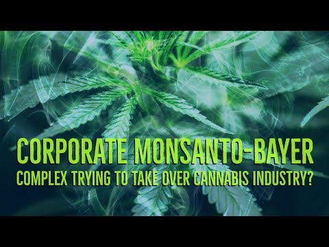 Corporate Monsanto Bayer Complex Trying To Take Over The Cannabis Industry?