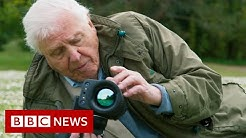 David Attenborough Act now on climate change or it will be too late - BBC News