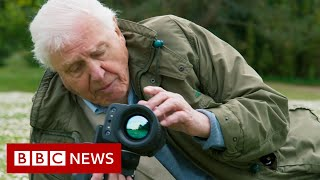 David Attenborough: 'Act now on climate change or it will be too late' - BBC News