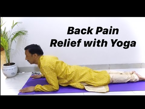 back pain relief with yoga  youtube