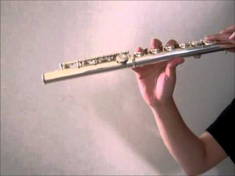 Ima demo anata ga [今でもあなたが] - Fujita Maiko (flute cover)