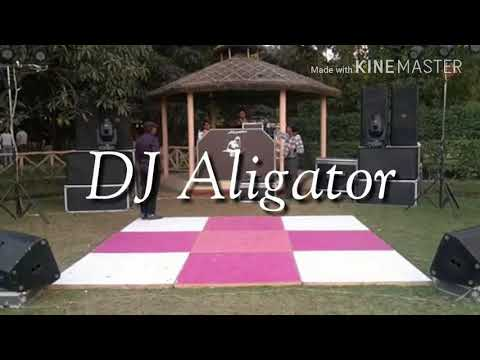 DJ Aligator sound track  & lights