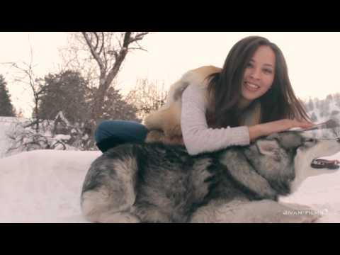 Видео, поразившее зрителей на конкурсе красоты