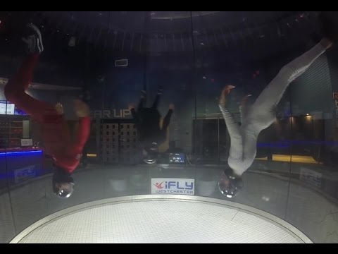 Musicality in the wind tunnel