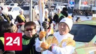 Определились первые спортсмены, которые представят КНДР на Олимпиаде - Россия 24