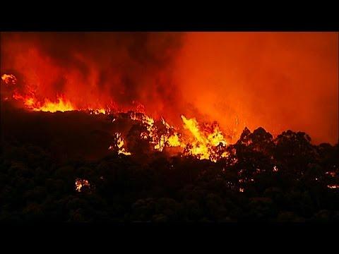 Survivors of the Firestorm (Full Documentary)