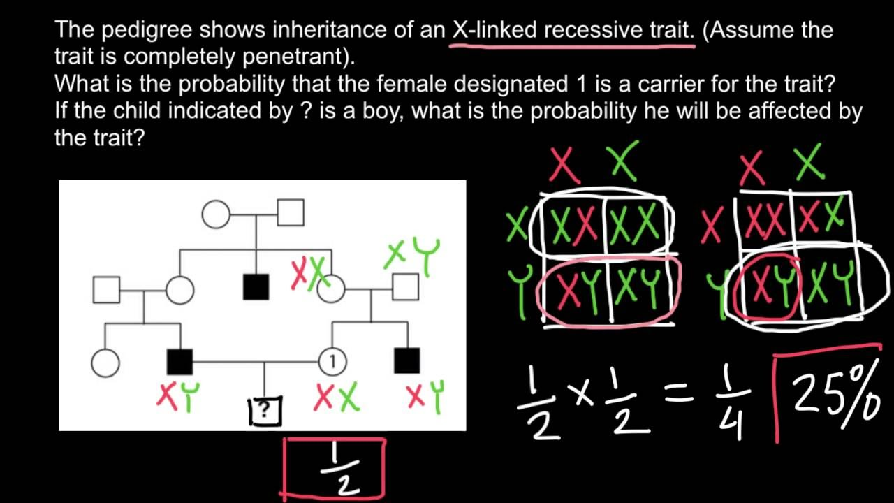 how to solve pedigree problems  easily