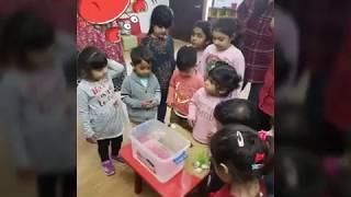 Alpha Preschool , Sensory Play Under the Sea