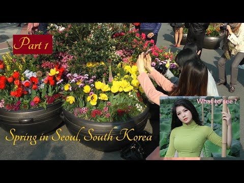 WHAT TO SEE : Spring in Seoul, PART 1, South Korea