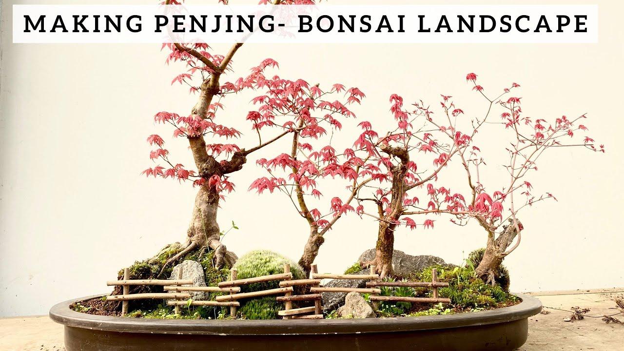 Making Penjing Bonsai Landscape Youtube