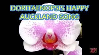 Виды и сорта орхидеи Фаленопсис .
